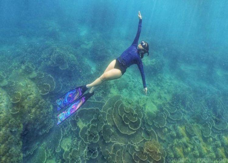 Sức khỏe tốt để lặn biển Côn Đảo